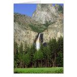 Cascade en parc national de Yosemite, la Californi Carte De Vœux