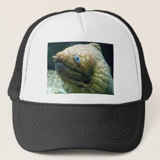Casquette Anguille de Moray repérée