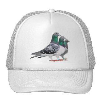 Casquette avec trio de pigeons voyageur