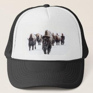 Casquette Buffalo