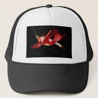 Casquette Cactus de Noël rouge