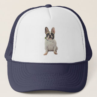 Casquette Cap with french bulldog design
