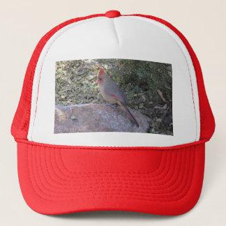 Casquette Cardinal du nord féminin