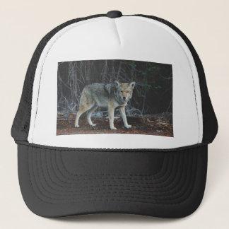 Casquette Chasse de coyote