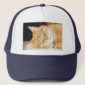 Casquette chat