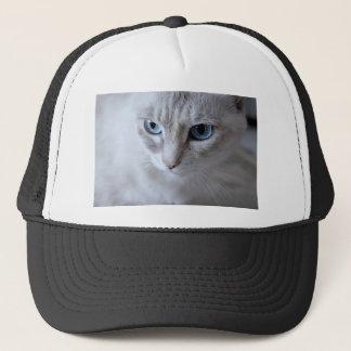 Casquette Chat de Kisa d'yeux bleus