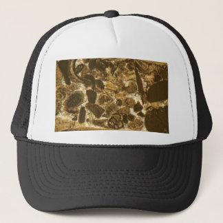 Casquette Chaux miocène sous le microscope