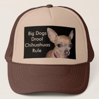Casquette Chihuhahua vous regardant