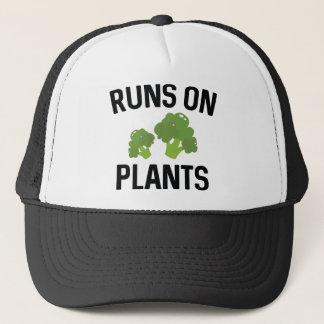 Casquette Courses sur des plantes