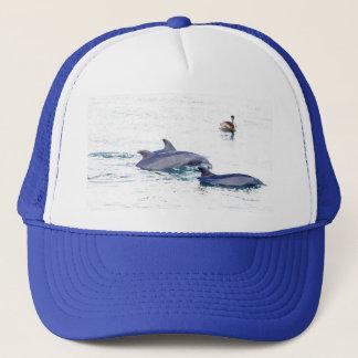 Casquette de dauphins de Bottlenose