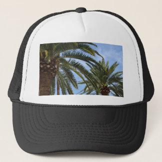Casquette de palmier