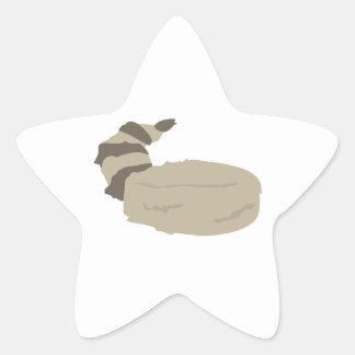 Casquette de peau de ragondin sticker étoile
