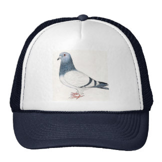 Casquette de pigeon