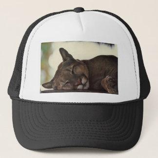 Casquette de puma de sommeil