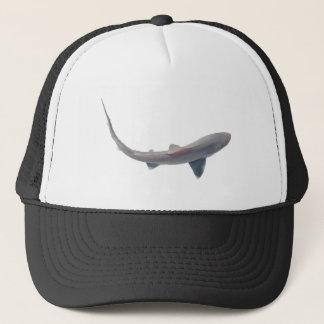 Casquette de requin de chiens de mer