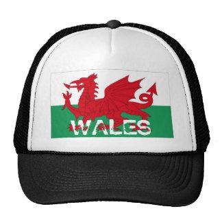 Casquette de souvenir de drapeau de cymru du Pays