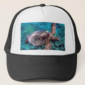 Casquette de tortue d'Hawaï Honu