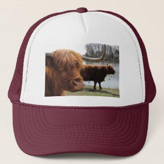 Casquette des montagnes écossais de ~ de bétail