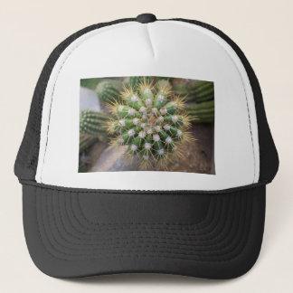 Casquette Dessus de cactus