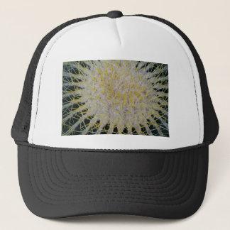 Casquette Dessus de cactus de baril