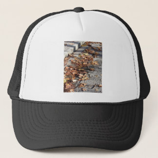 Casquette Feuille mort se trouvant au sol en automne