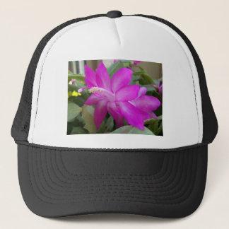 Casquette fleur de cactus de Noël 003a