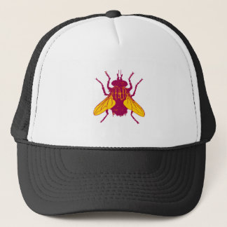 Casquette Flyby