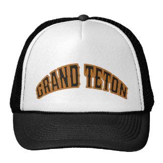 Casquette grand de logo d'ours de Teton