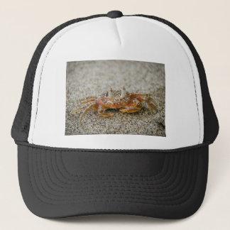 Casquette Griffes de crabe