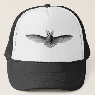 Casquette Illustration vintage de batte