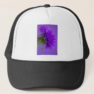 Casquette Image en gros plan de l'aster de fleur sur le
