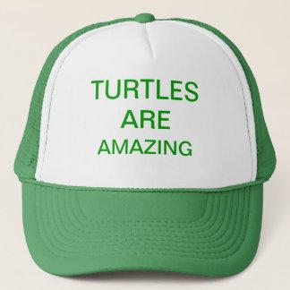 Casquette les tortues sont extraordinaires