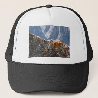 Casquette Lichens oranges s'élevant sur le visage de roche