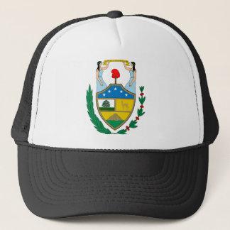 Casquette Manteau de la Bolivie des bras