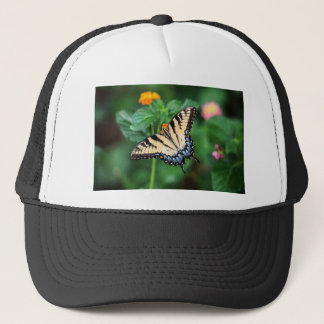 Casquette Nature de vert de fleur d'été de papillon florale