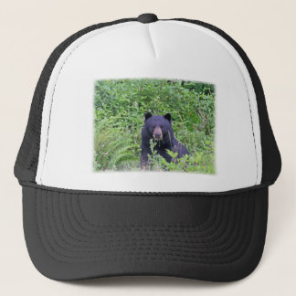 Casquette Ours noir dans les bois