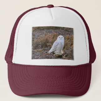 Casquette Photo de hibou de Milou