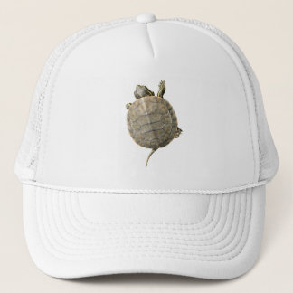 Casquette Photo minuscule de tortue (tortue)