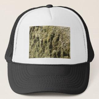 Casquette Pierre patinée avec l'arrière - plan de lichen et