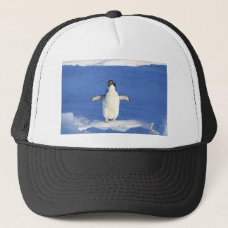 Casquette Pingouin