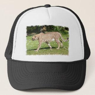Casquette Plan rapproché de guépard africain