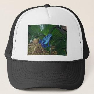 Casquette Portrait bleu de grenouille de flèche de poison