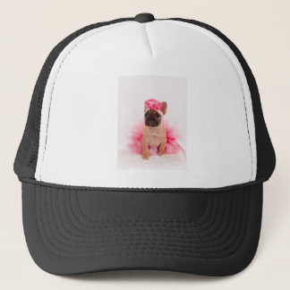 Casquette Puppy french bulldog disguised