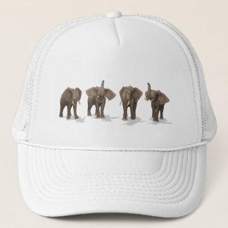 Casquette Quartet d'éléphants