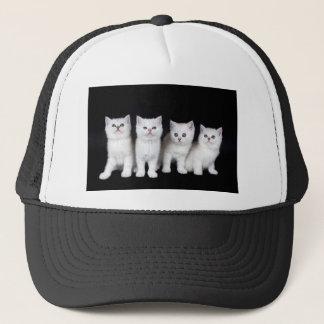 Casquette Rangée de quatre chatons blancs sur background.JPG