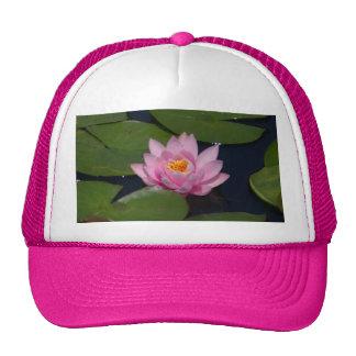 Casquette rose de nénuphar de Lotus