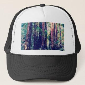 Casquette Séquoias de Californie