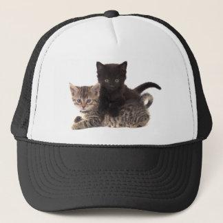Casquette tabby kitten black kitten