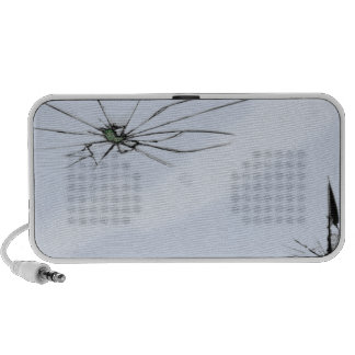 Cassé Haut-parleurs iPod