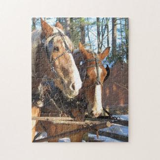 Casse-tête de chevaux puzzle
